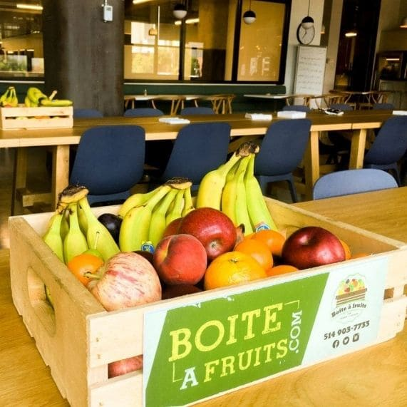 Logibec-join-our-team-fruits